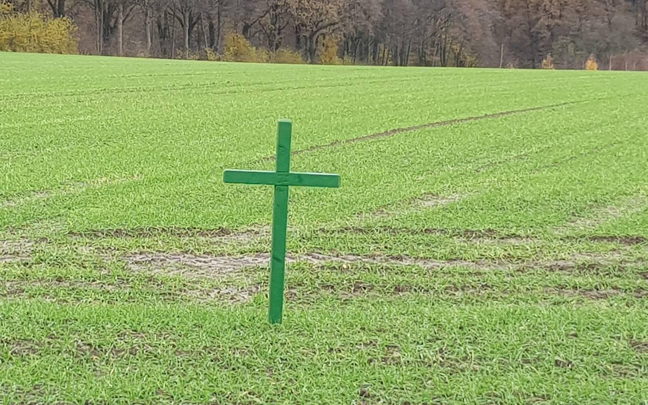 Kreuze Auf Feldern